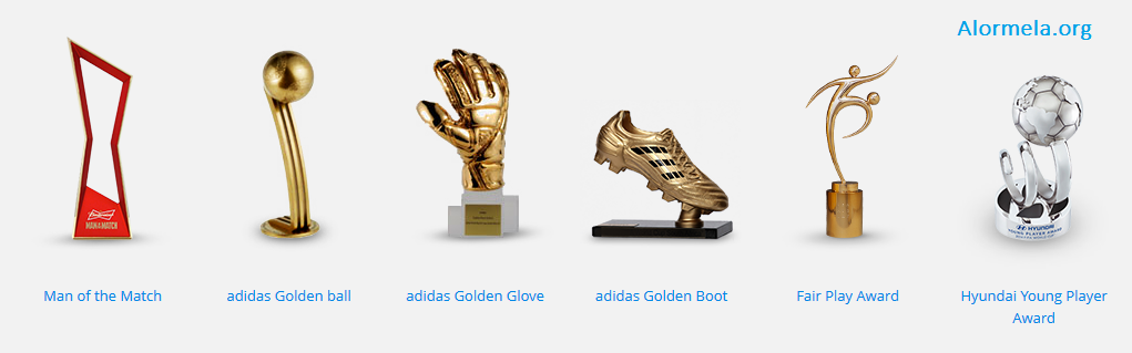 FIFA World Cup 2014 Awards